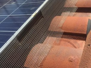 Solar Panel Barriers Prevent Pigeons From Nesting